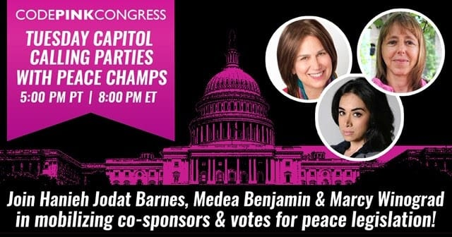 Immigration Justice – Code Pink Congress Zoom  – Join Us!